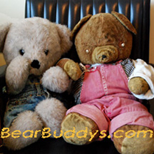 BearBuddys.com Toy Stuffed Plush Animal image